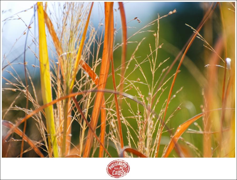 20111003_pfac_020-2438203807-o