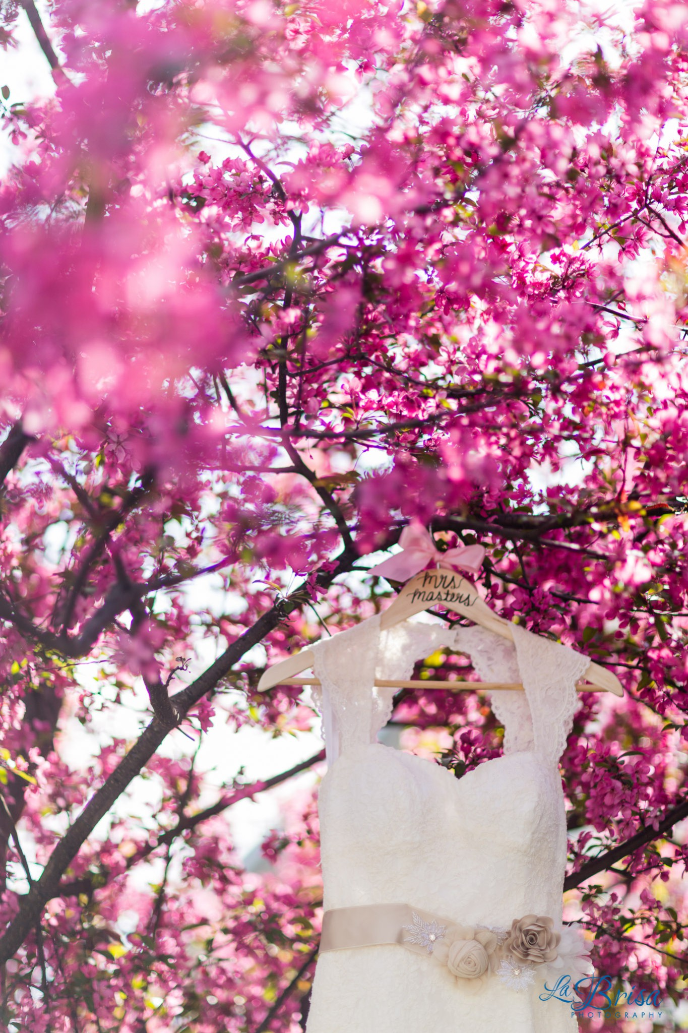 Wedding Photography Dress in the Trees Spring