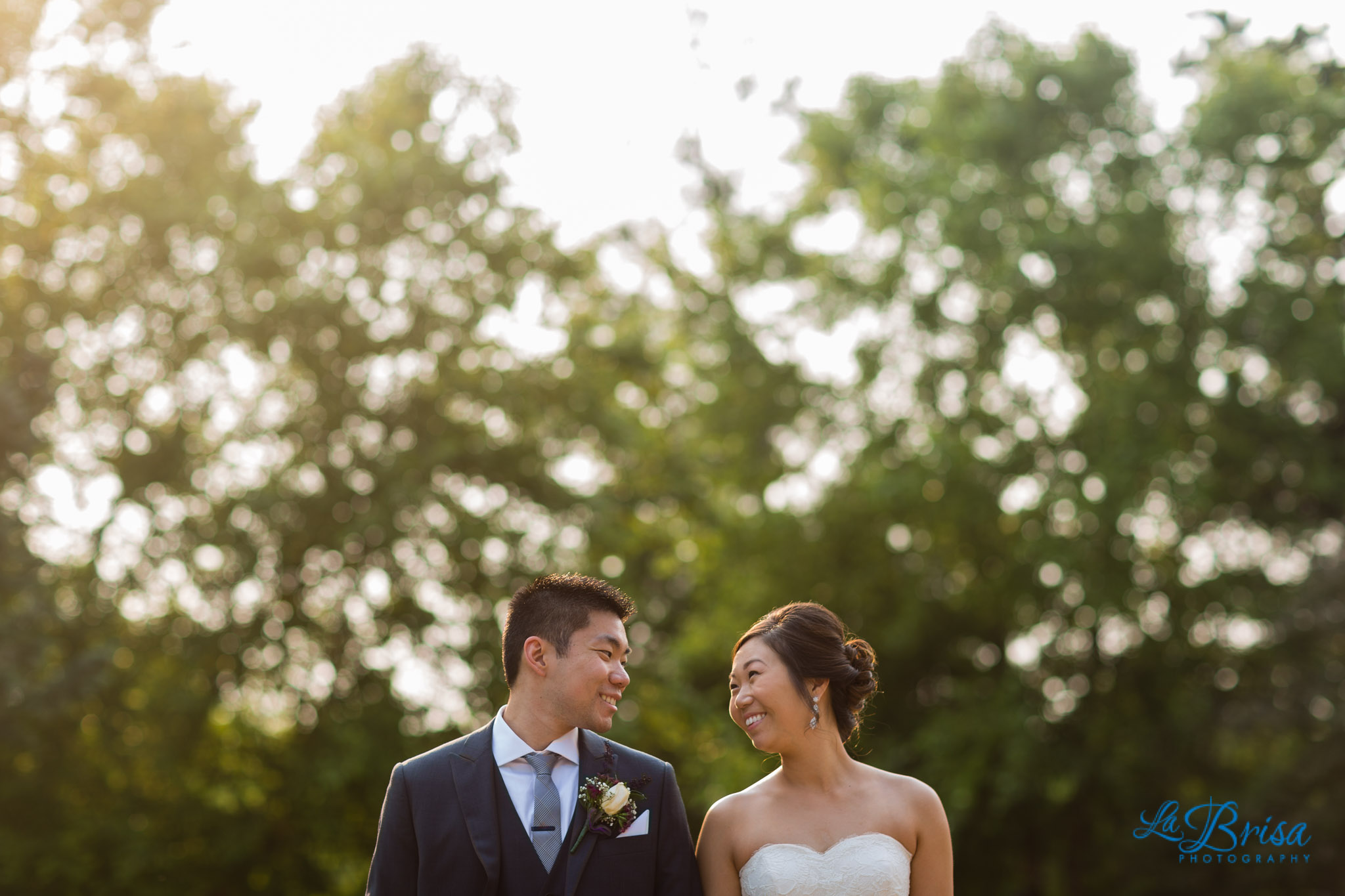 Sharon Frank Preview Wedding Photography Naperville Il Chris Hsieh