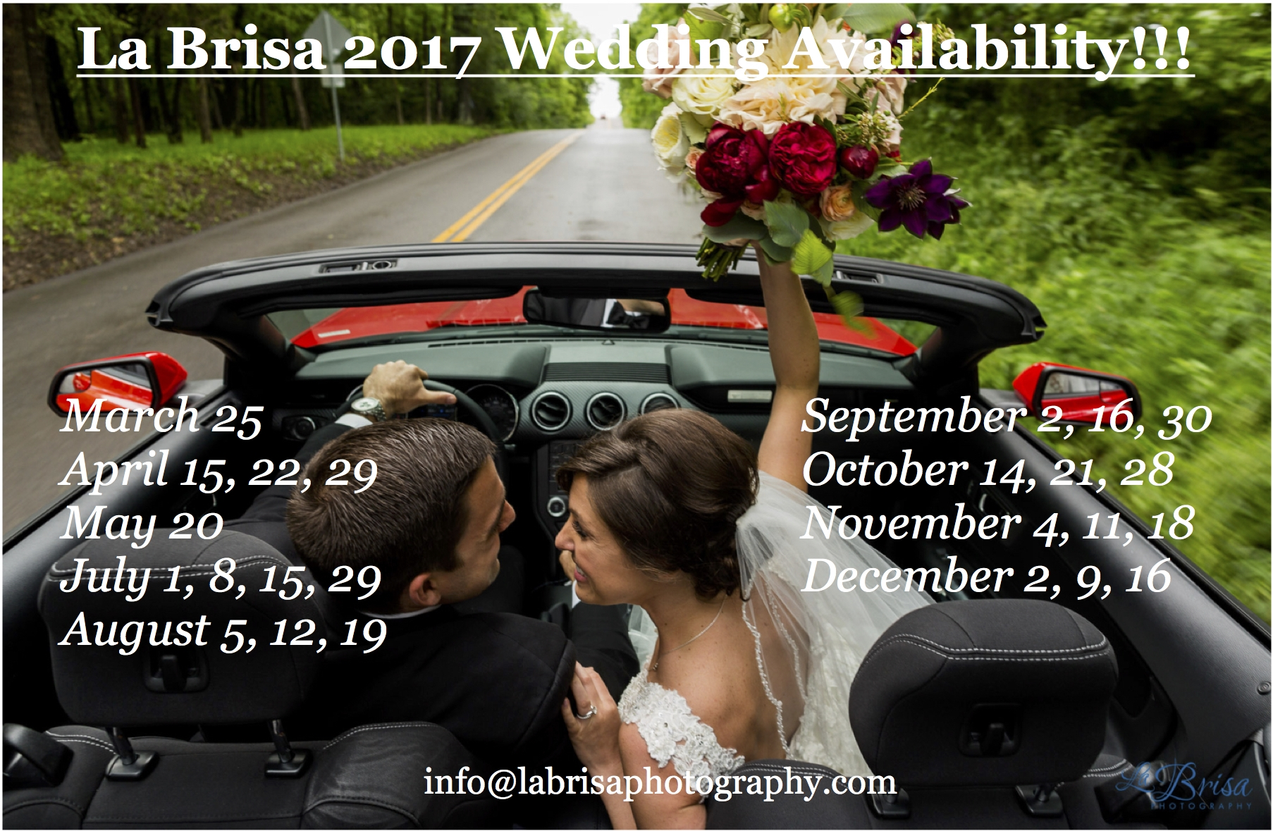 2017-wedding-availability