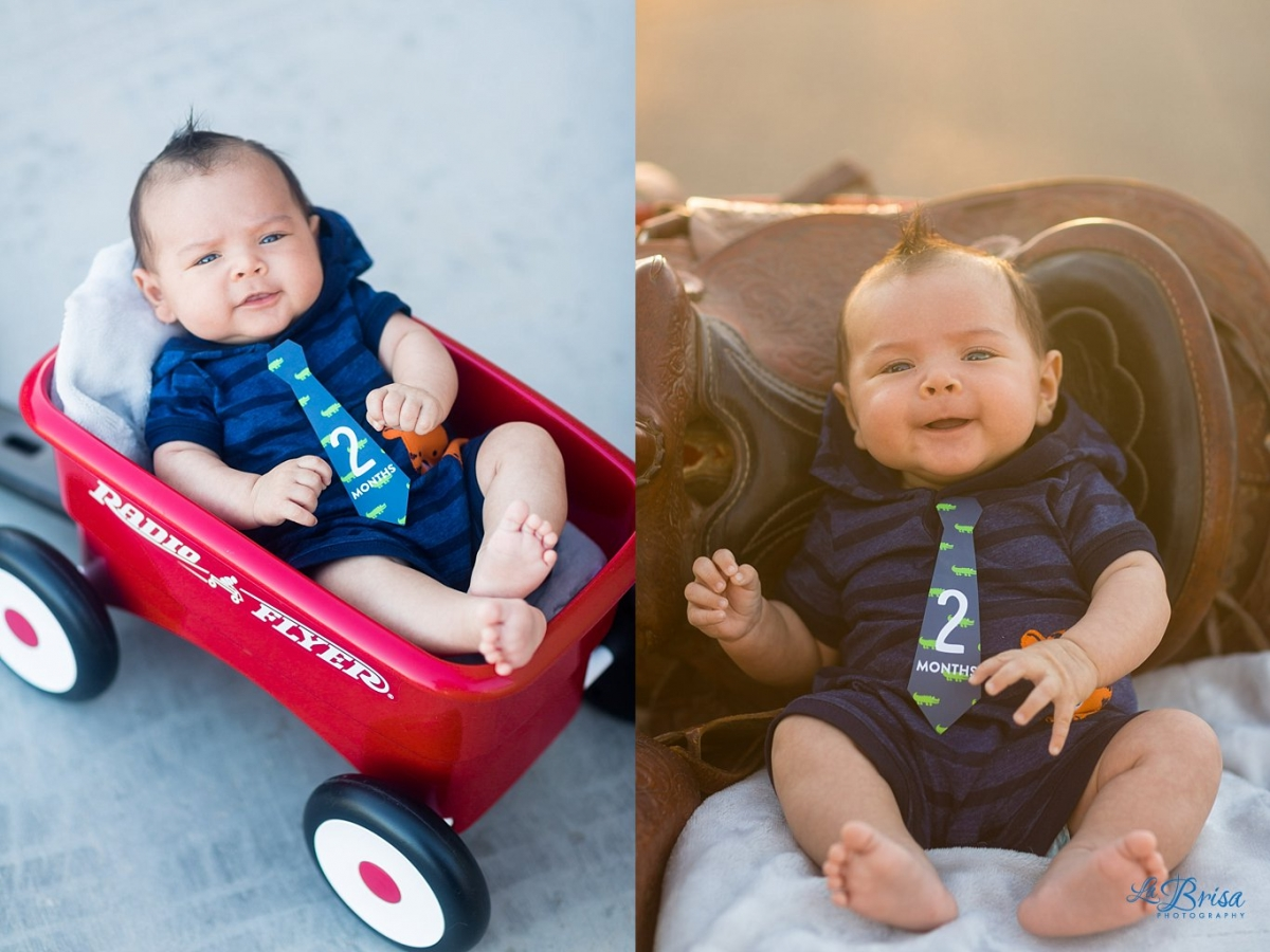 2 month old Baby Photographer