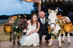 wedding donkey bartender