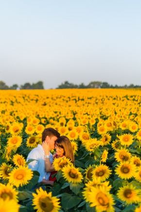 Sunflower Field Engagement Photography La Brisa Chris Hsieh