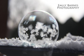 La Brisa Monthly Photography Competition Emily Barnes