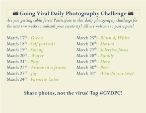 Going Viral Daily Photography Challenge